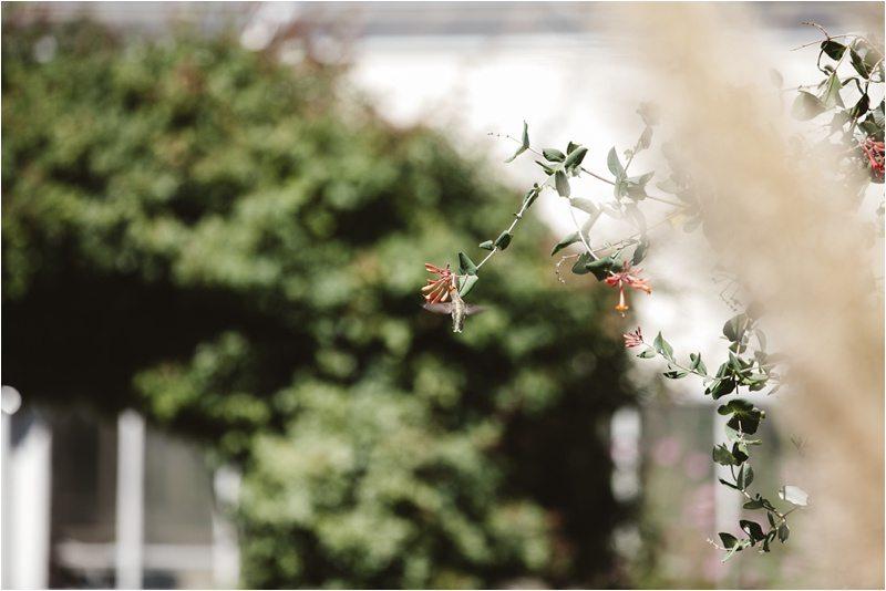 007Blue-Rose-Photography_-Los-Poblanos-Wedding_Albuquerque-Wedding-Photographer_New-Mexico-NM-wedding-Photography