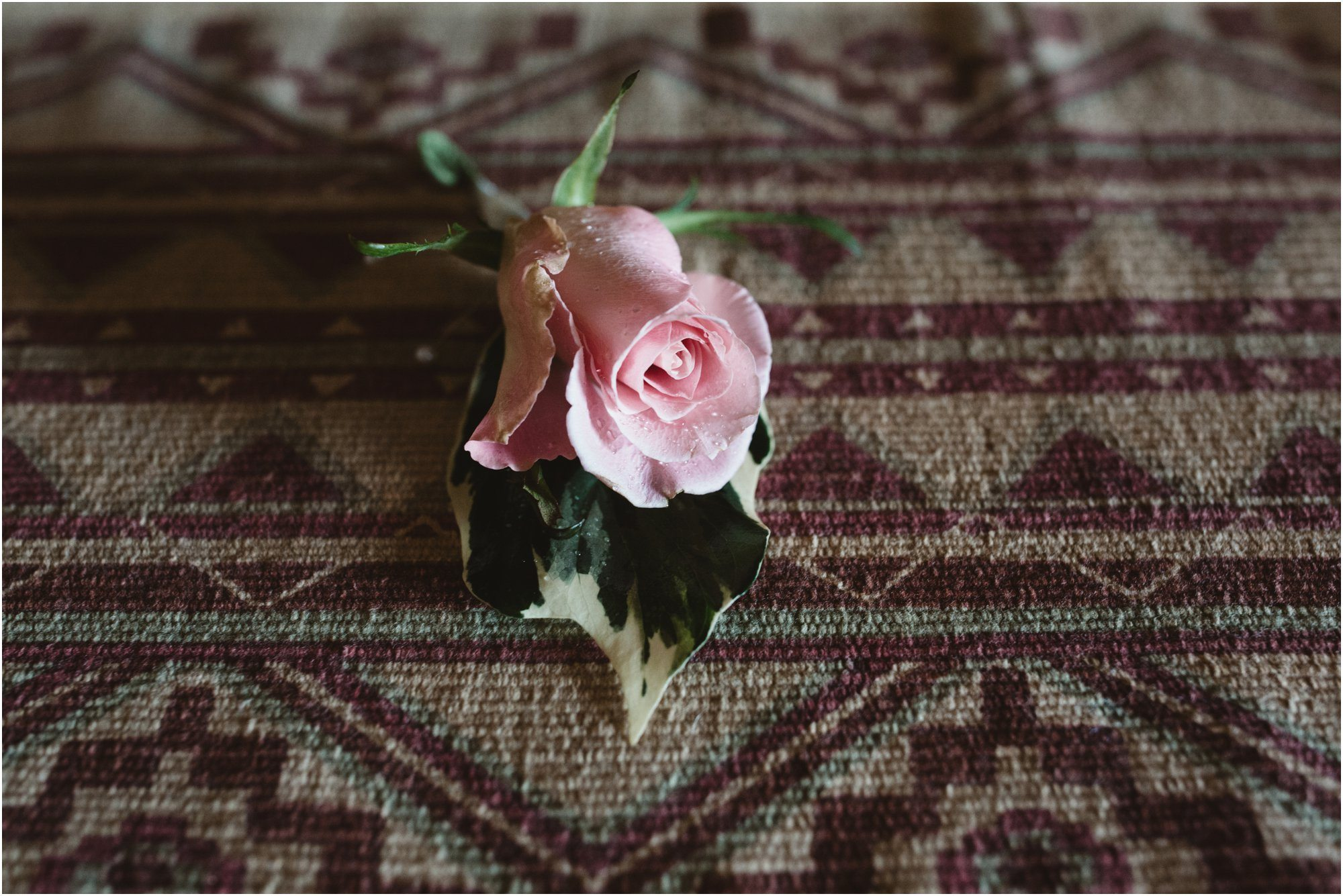 02Blue Rose Photography