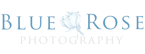 Albuquerque Wedding Photographer — Blue Rose Studios