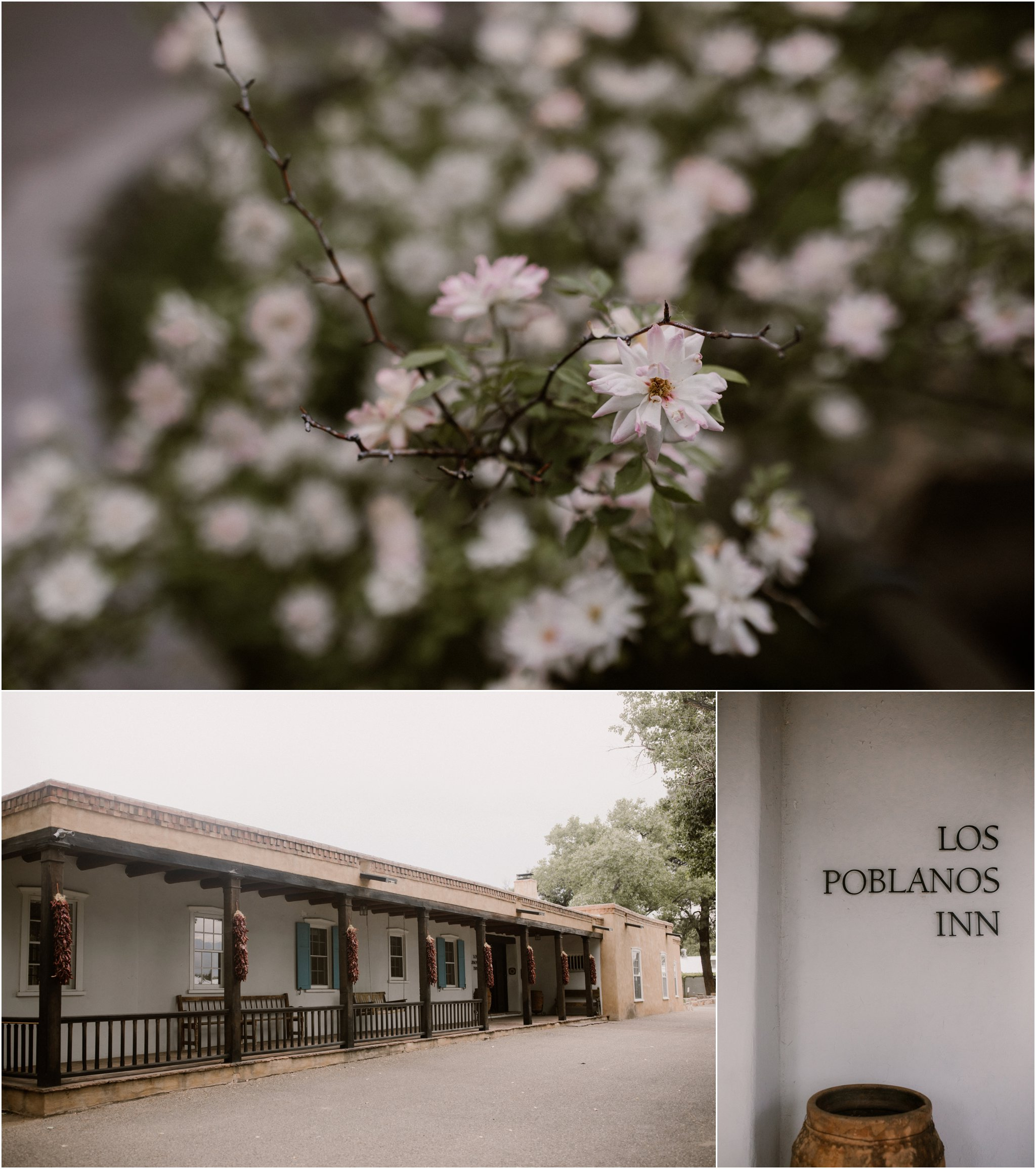 0001Albuquerque Wedding Photographer_ Los Poblanos Inn_ Blue Rose Photography