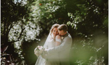 Allison and Daniel, Albuquerque NM Wedding